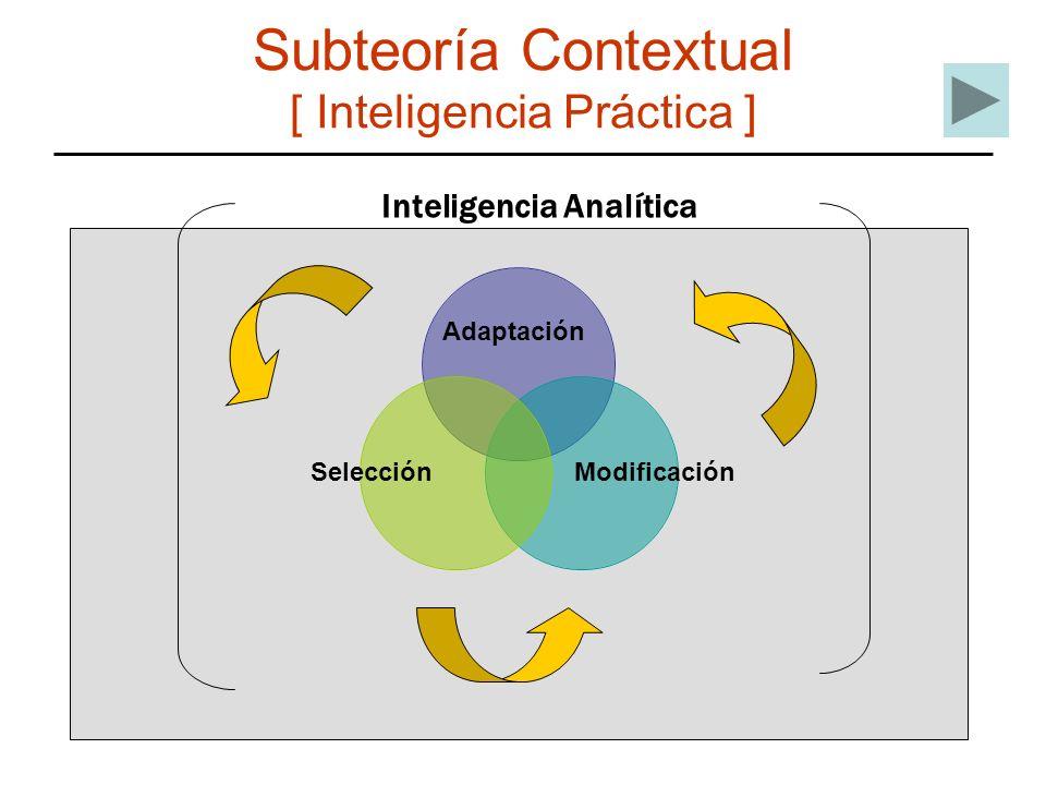 Subteoría Contextual [ Inteligencia Práctica ]